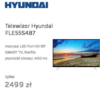 Hyundai FLE55S487