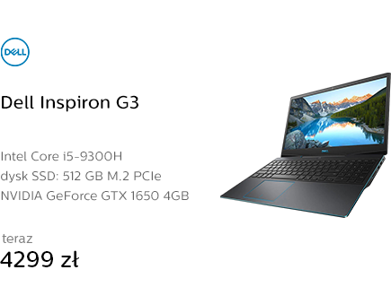 Dell Inspiron G3 i5-9300H/16GB/512/Win10 GTX1650
