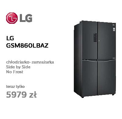 LG GSM860LBAZ