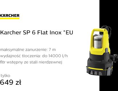 Karcher SP 6 Flat Inox *EU