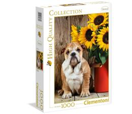 Puzzle 500 - 1000 elementów Clementoni Puzzle HQ  The Bulldog