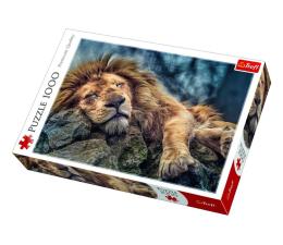 Puzzle 1000 - 1500 elementów Trefl 1000 el Śpiący lew