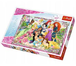 Puzzle do 500 elementów Trefl 260 el Spotkanie księżniczek Princess