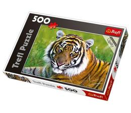 Puzzle 500 - 1000 elementów Trefl 500 el Tygrys