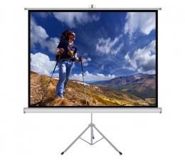 """Ekran projekcyjny ART Ekran ręczny na statywie 98"""" 178x178cm 1:1"""