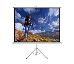 """Ekran projekcyjny ART Ekran ręczny na statywie 118"""" 213x213cm 1:1"""
