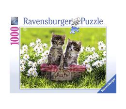 Puzzle 1000 - 1500 elementów Ravensburger Piknik na łące 1000 el.