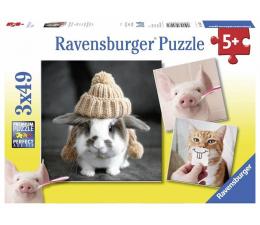Puzzle dla dzieci Ravensburger Śmieszne portrety zwierząt