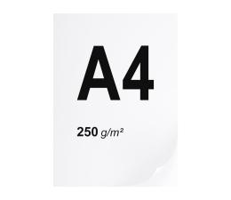Papier do drukarki A4 ryza 250 szt. 250g/m