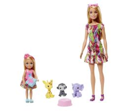 Lalka i akcesoria Barbie Chelsea Zaginione Urodziny