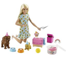 Lalka i akcesoria Barbie Przyjęcie dla szczeniaczka