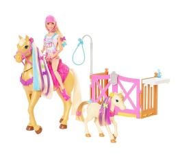 Lalka i akcesoria Barbie Koniki Stylizacja i opieka Zestaw Lalka + konie i akcesoria