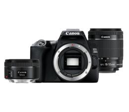 Lustrzanka Canon EOS 250D+ EF-S 18-55mm F4-5.6+ IS 50 F1.8S