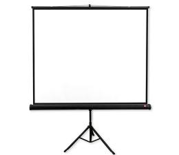 Ekran projekcyjny Avtek Ekran na statywie 108' 195x195 1:1 Biały Matowy