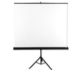 Ekran projekcyjny Avtek Ekran na statywie 111' 200x200 1:1 Biały Matowy