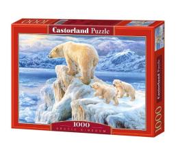 Castorland Arctic Kingdom (102525)