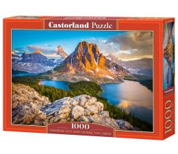 Castorland Assiniboine Vista, Banff National Park, Canada (103423)