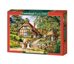 Castorland Copy of: What Lovely Flowers (300358)