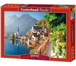 Castorland Hallstatt, Austria (200122)