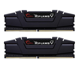 G.SKILL 16GB 3000MHz Ripjaws V CL15 (2x8GB)  (F4-3000C15D-16GVGB)