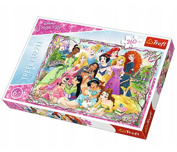 Trefl 260 el Spotkanie księżniczek Princess - 479496 - zdjęcie