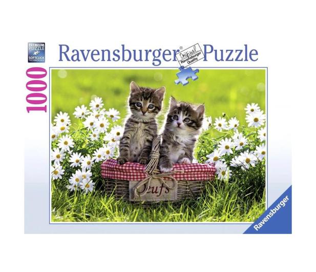 Ravensburger Piknik na łące 1000 el. - 483219 - zdjęcie