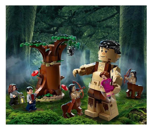 LEGO Harry Potter Zakazany Las: spotkanie Umbridge - 565388 - zdjęcie 3