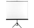 Avtek Ekran na statywie 111' 200x200 1:1 Biały Matowy  (Tripod Standard 200)