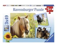 Ravensburger Kochane Konie - 470025 - zdjęcie 1