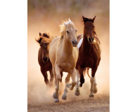 Clementoni Puzzle HQ  Running horses - 417124 - zdjęcie 2