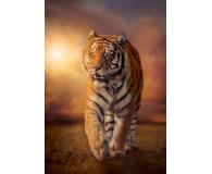 Clementoni Puzzle HQ  Tiger  - 417247 - zdjęcie 2
