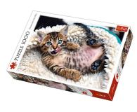 Trefl 1000 el Wesoły kotek - 479216 - zdjęcie 1