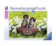 Ravensburger Piknik na łące 1000 el. - 483219 - zdjęcie 1
