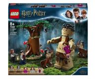 LEGO Harry Potter Zakazany Las: spotkanie Umbridge - 565388 - zdjęcie 1