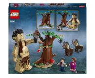 LEGO Harry Potter Zakazany Las: spotkanie Umbridge - 565388 - zdjęcie 7