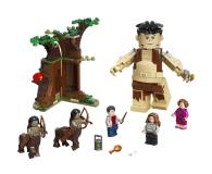 LEGO Harry Potter Zakazany Las: spotkanie Umbridge - 565388 - zdjęcie 6