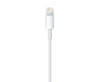 Apple Kabel USB - Lightning 0,5m - 170297 - zdjęcie 2