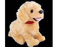Madej Figo Mądry Szczeniaczek Labrador (3060062604)