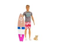 Mattel Barbie Delfiny z Magicznej Wyspy Ken Surfer (FBD71)